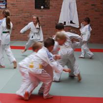 association-judo-club-masnierois